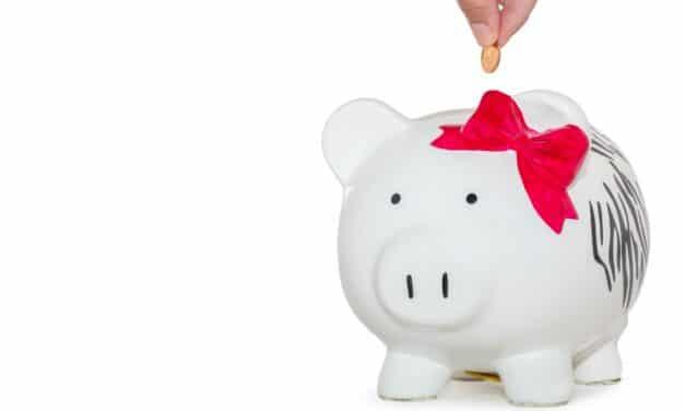 Har du råd til forbrug?